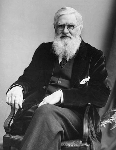 Black and whit photograph of Alfred Russel Wallace